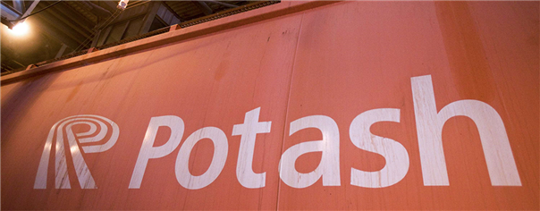Potash Corporation Shares Slump On Disappointing Earnings, Dividend Cut