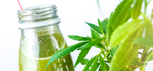 Beverages Could Become One of the Biggest Segments in the Cannabis Industry